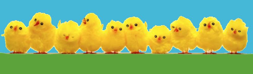 kyllinger2.jpg