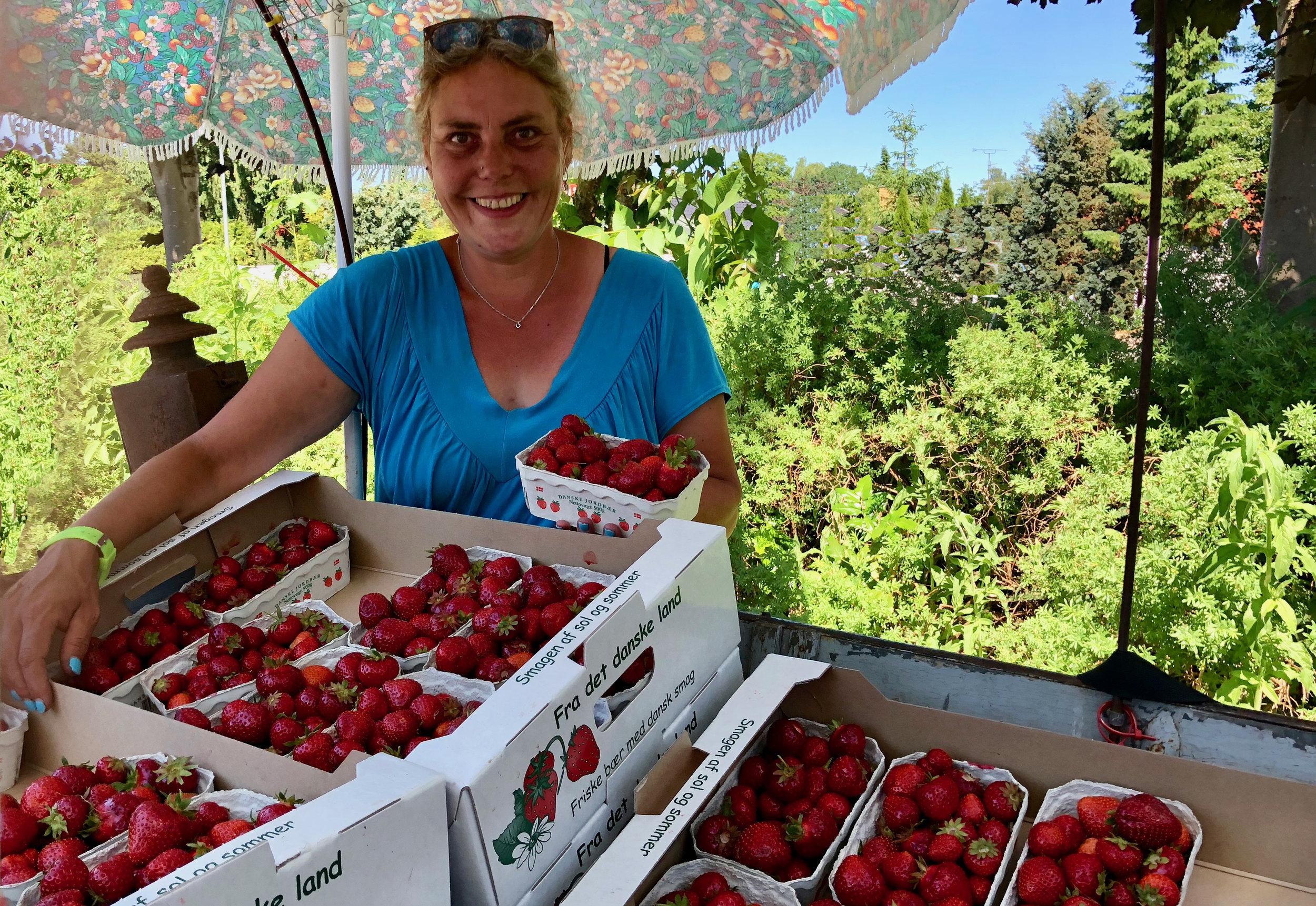 Snart er Sussi Øder igen på pletten med friske, søde jordbær ved Kongevejen her i Blovstrød. Det er ved Kongevejen 59 - ved fritidshus-udstillingen. Arkivfoto: AOB