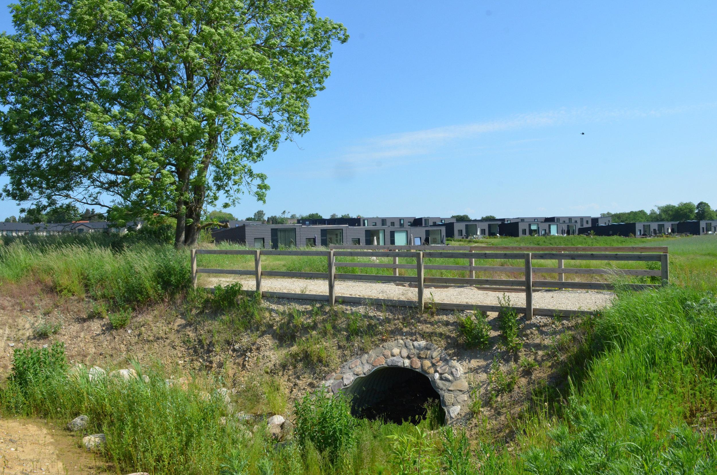 Den nye Kirkesti vil blive ført over et regnvandsløb med en nyetableret bro. Foto: AOB