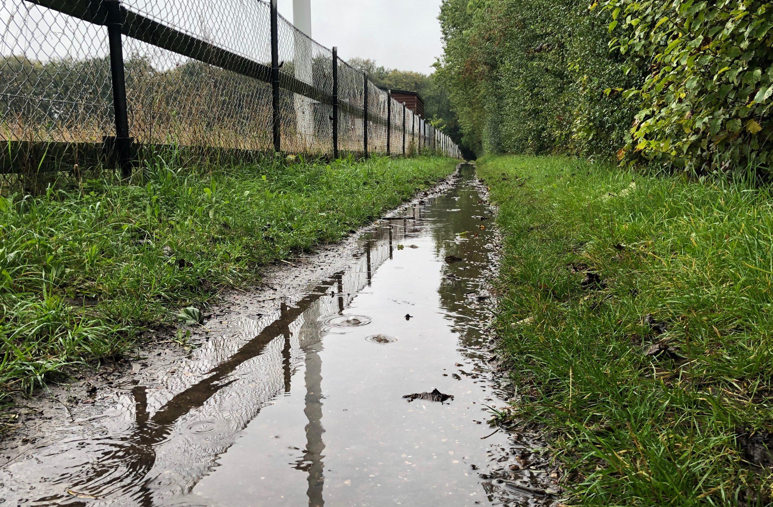 Når det har regnet, er det en mudret sti og fyldt med vand, som man skal passere, hvis man vil besøge Tokkekøb Hegn. Foto: AOB