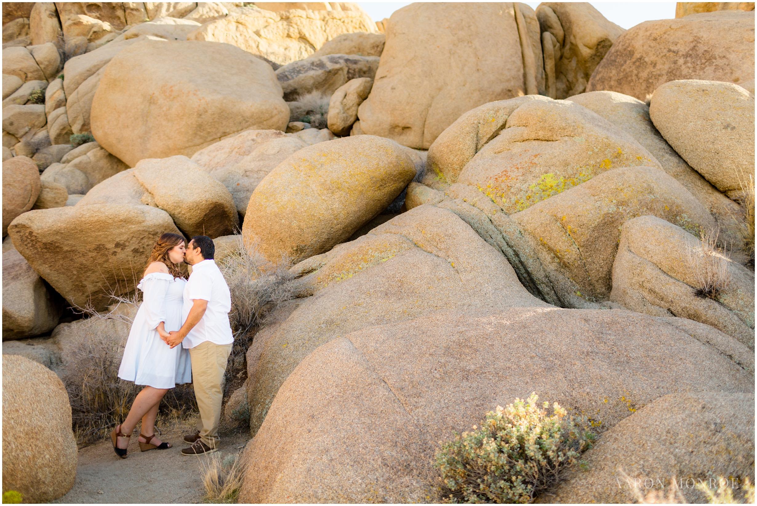 Joshua_Tree_Engagement_Los_Angeles_Wedding_Photographer_0218.jpg