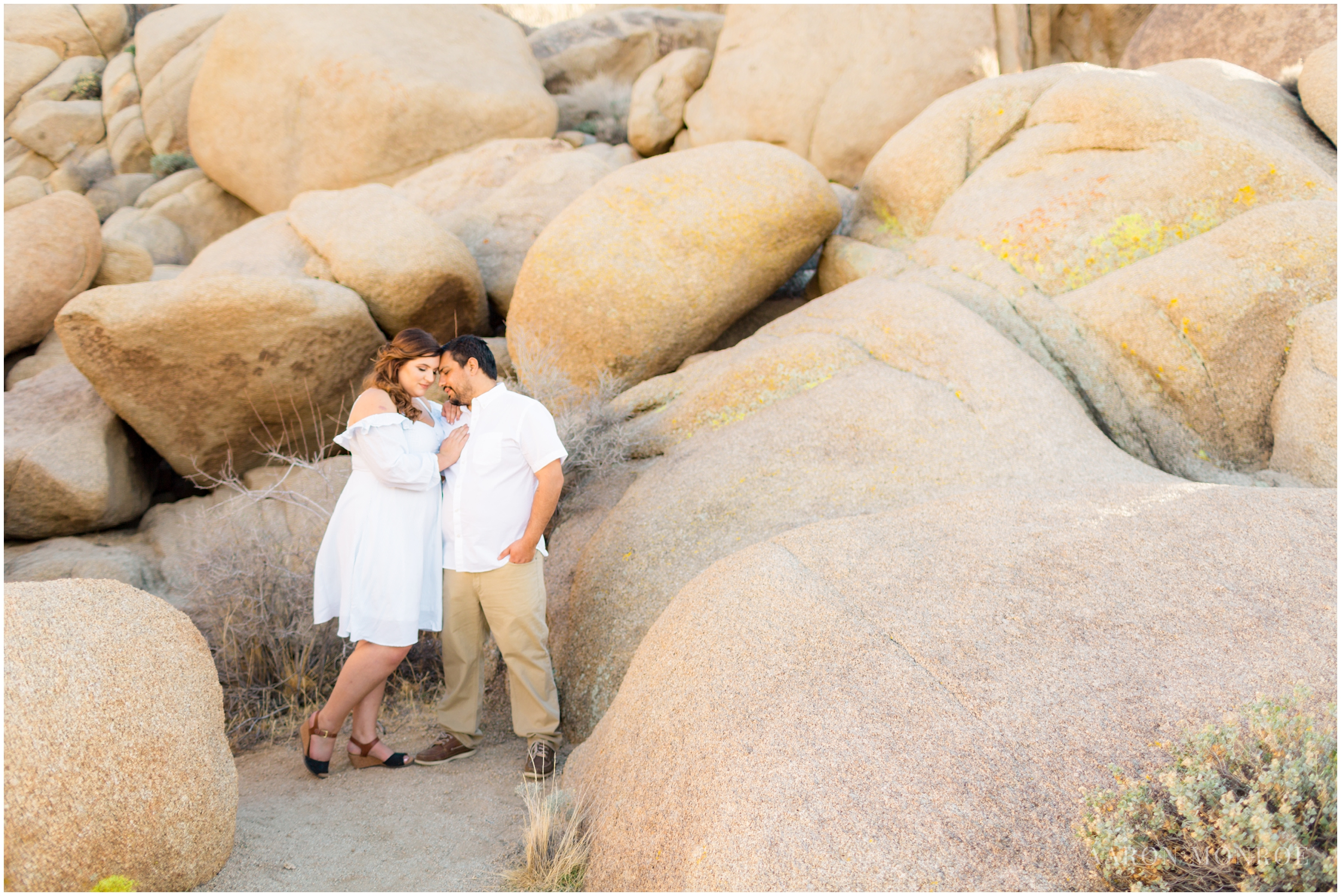 Joshua_Tree_Engagement_Los_Angeles_Wedding_Photographer_0220.jpg