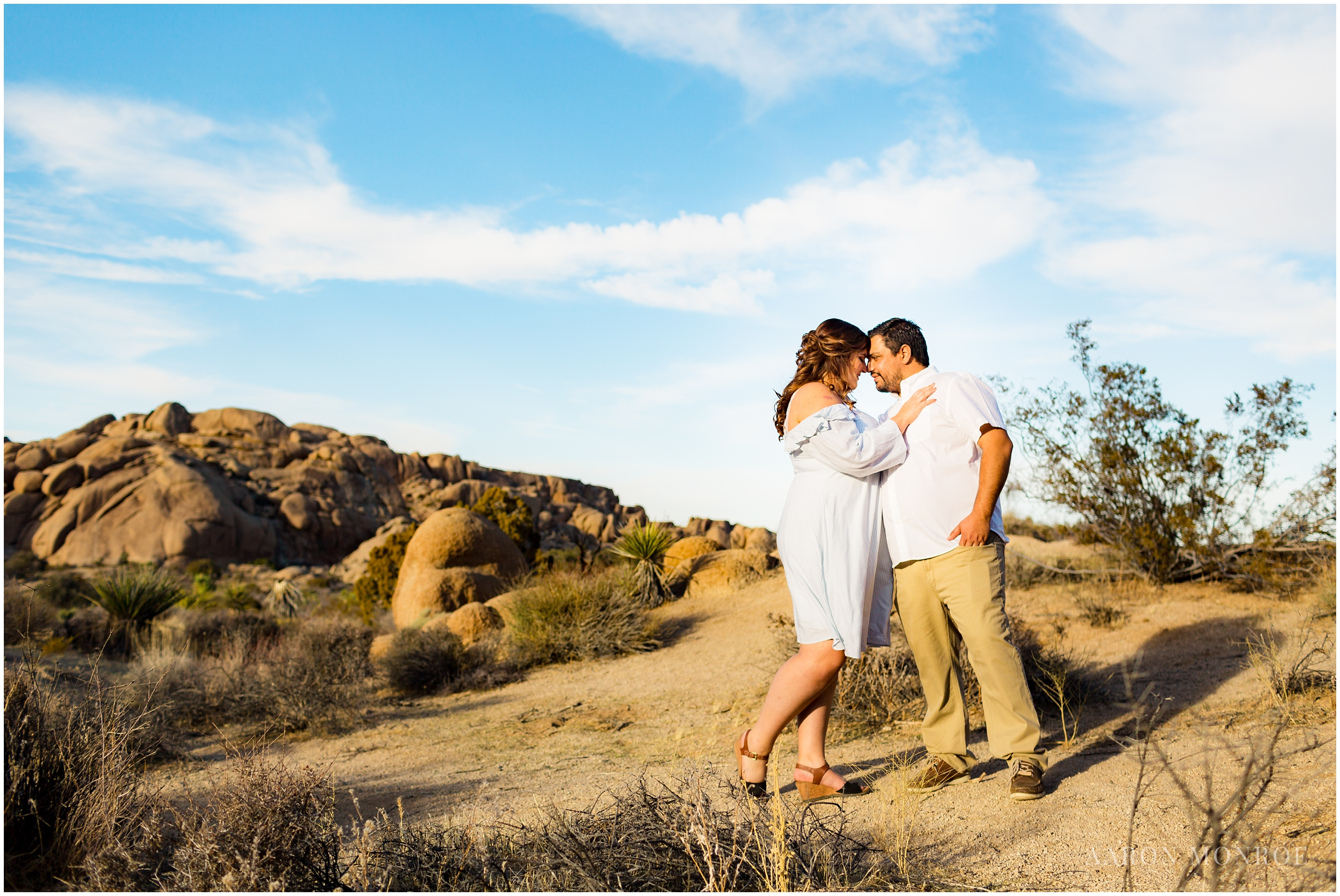 Joshua_Tree_Engagement_Los_Angeles_Wedding_Photographer_0226.jpg
