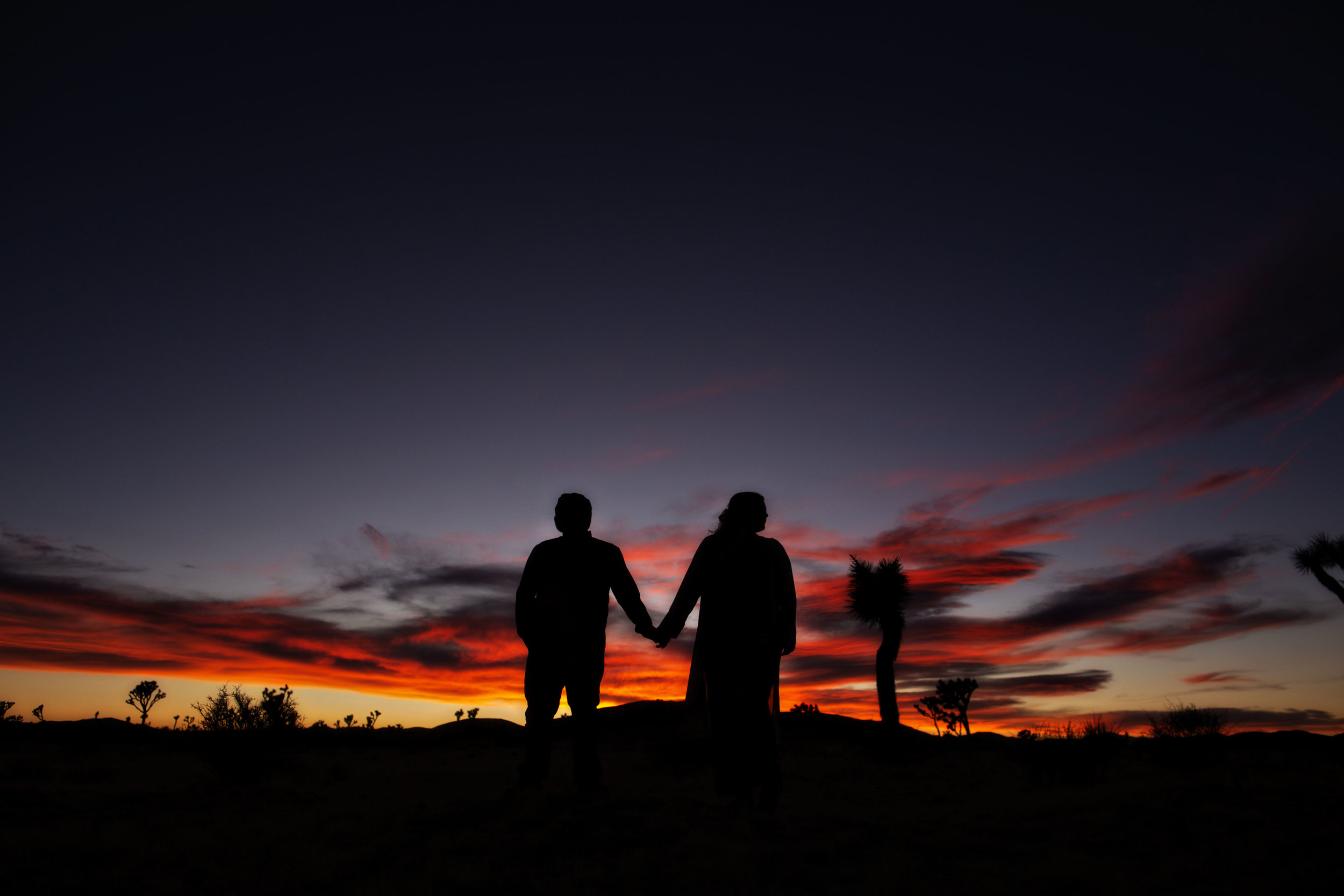 joshua_tree_engagement_10.jpg