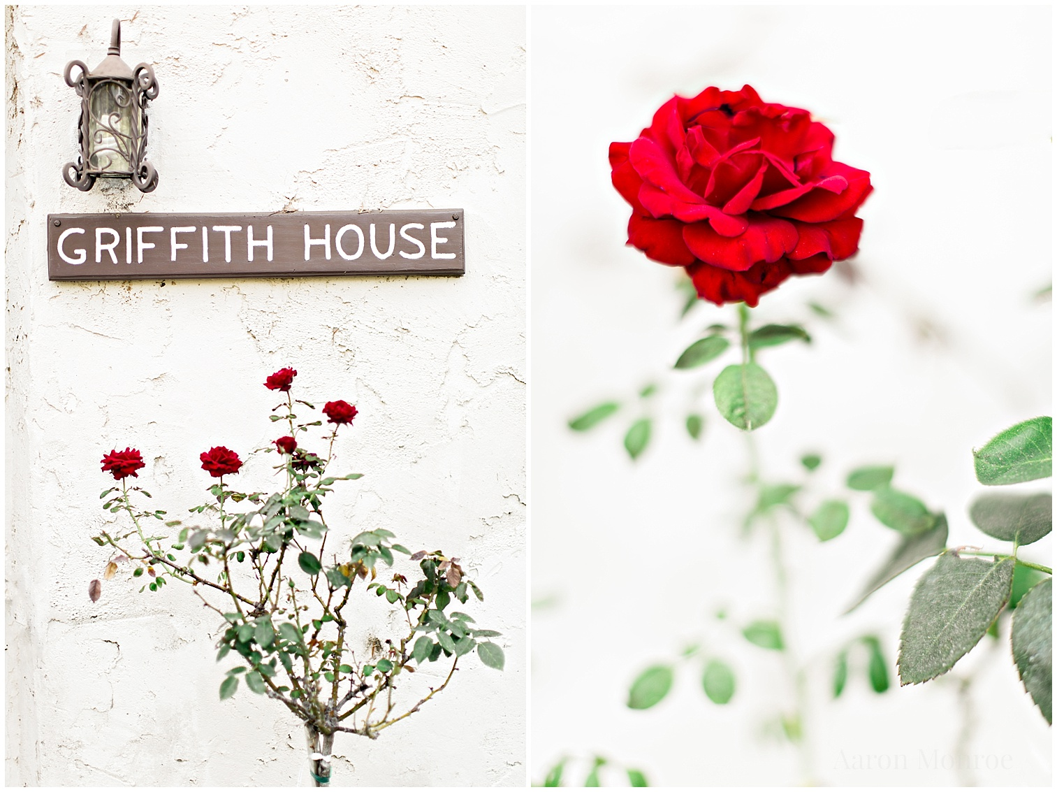Griffith_House_Wedding_Photography_0594.jpg