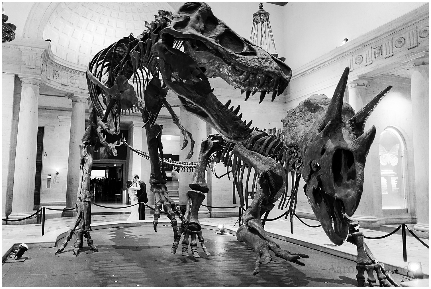 natural_history_musuem_los_angeles_wedding_photos_0806.jpg