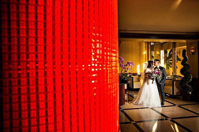 Eric + Kelsey - 1.19.2019 - Venue: @thevintageroseweddings #madewithmagmod . . . . .  #wedding #engaged#shesaidyes #2019bride #boda#radcouples #galialahav#weddingdress#californiaweddingphotographer#californiawedding #radcouples#modern #photooftheday #fpme#loveauthentic #classicwedding #ootd#bride #happy #fit#engagementphotos #theknot #love#destinationwedding #losangelesweddingphotographer #orangecountyweddingphotographer #wildhearts #instagood #lightchasers #vscowedding