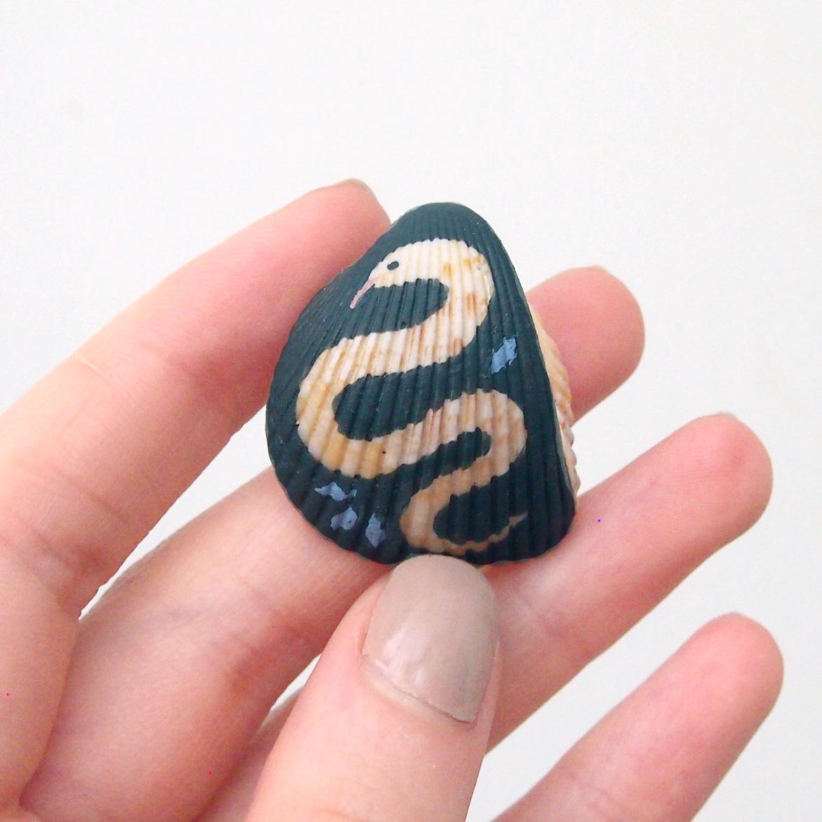 snakeshell3 sq.jpg