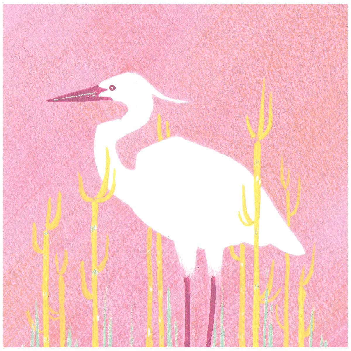Heron crop RGB.jpg