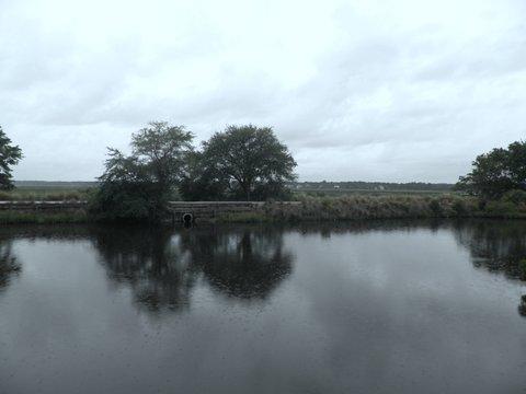 pond-park4.jpg