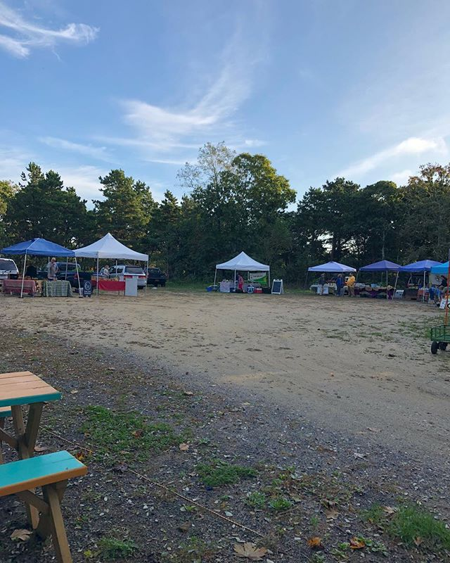 Be sure to join us today for the last Wednesday market of the season! We're here til noon on this gorgeous fall day!  Our musical guest is Harry Tucker... You'll find hot coffee, tea, pastries, quiche, frittata and more for tasty eats. Stock up on: eggs, cheese,  hummus, beans, melons, eggplant, Jerusalem artichokes, peppers, greens, cucumbers, potatoes, tomatoes, squash, apples, cranberries, pears, herbs, honey, fresh cut flowers, handmade baskets and bags, and much more .... #buyfreshbuylocal #getfreshwithafarmer @wellfleetfarmersmarket  @capecodhummus  @capecodorganicfarm  @daves_greens  #donovandesignscapecod  #downhomefarmcapecod  #GoodGracesBaskets  #monopati #narrowlandfarm #nestwoodfarm  @thecaptainsdaughters  @thymeafterthymecapecod  #wellfleetchickkoop @wildflour_bakery
