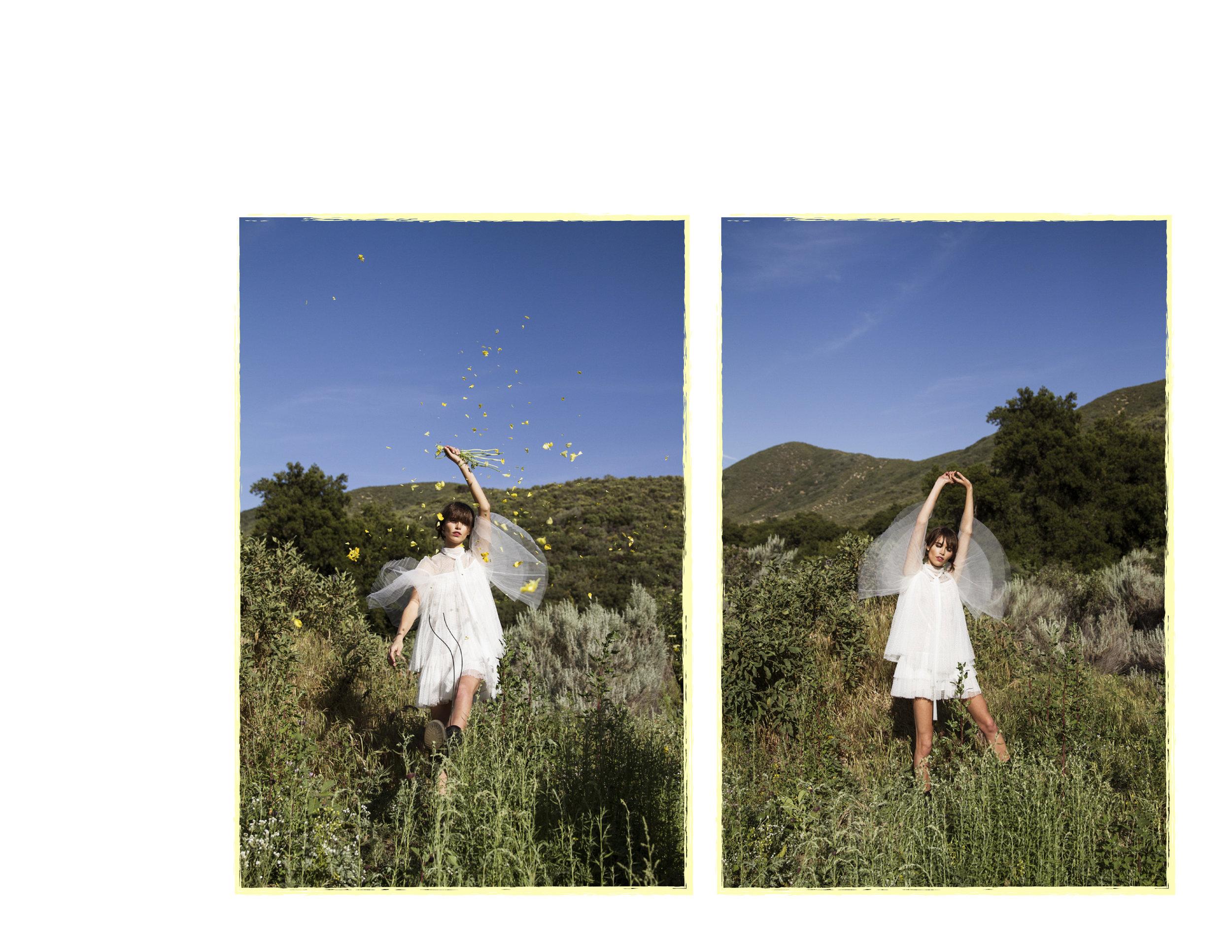 sam framed 3.jpg