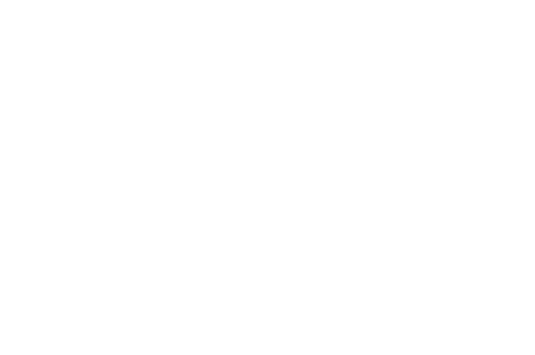 OFFICIAL SELECTION - Miami Fashion Film Festival - 2017.png