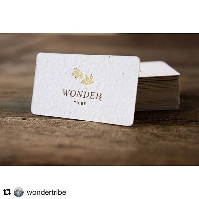 Grateful for the opportunity to collaborate with  @wondertribe on such thoughtful collateral. Looking forward to more projects ahead! ・・・ O' so happy how these native wildflower seed paper biz cards grew about ~ Excited to hand them out & hope others will make them sprout ~  Very grateful for talent & kindness of  @heysweetpea ~ Brand Guru's / design ~ @pressandpaperie ~ LetterPress Printing @ellamade_sb ~ Design & coordination (new note cards, and collateral to follow) @porridgepapers ~ Handmade Native Wildflower paper, Check them out!