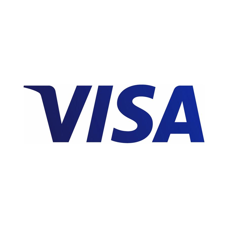 visa_2014_logo_detail.jpg