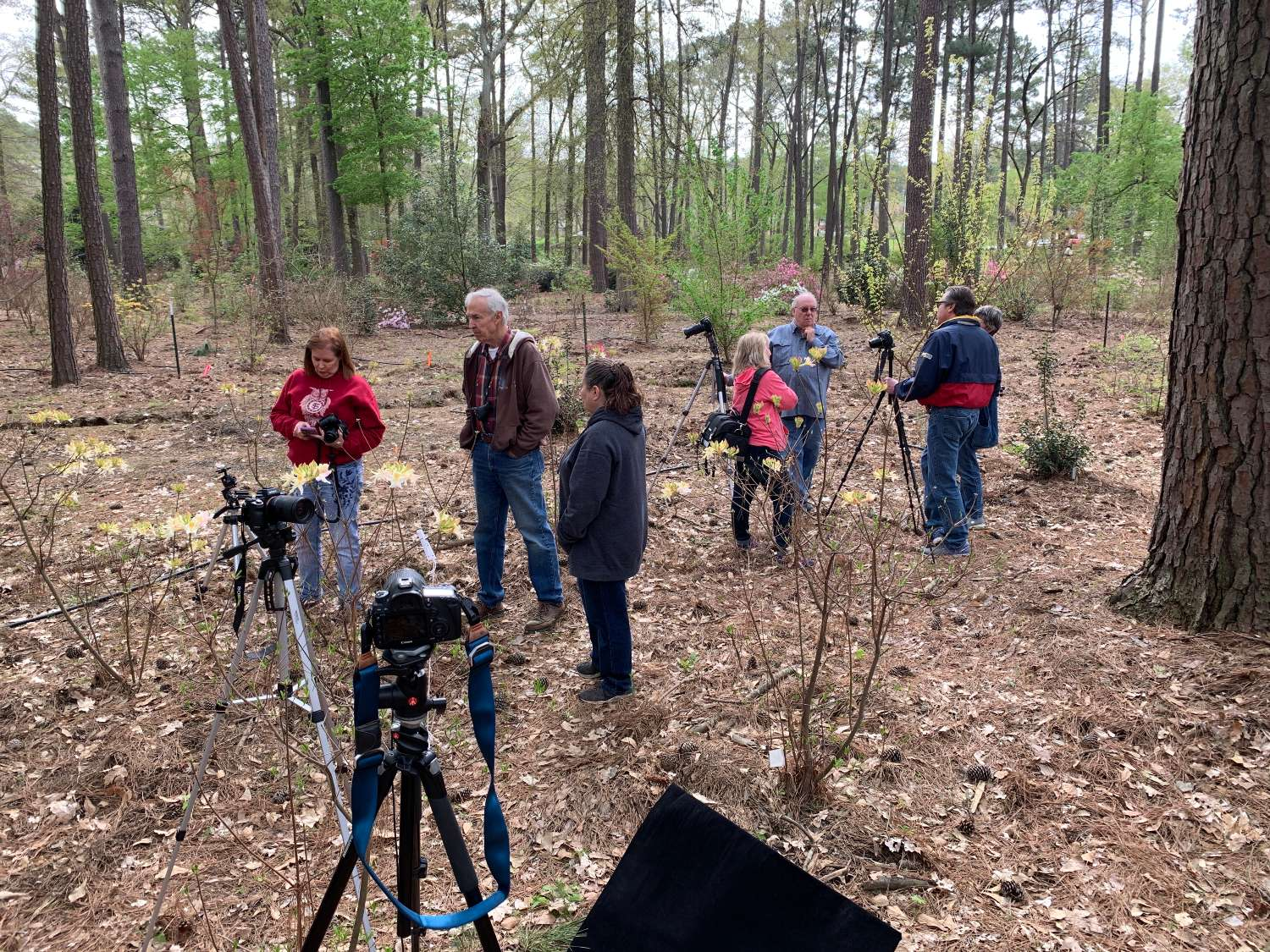 Nacogdoches Photography Club Field Trip -