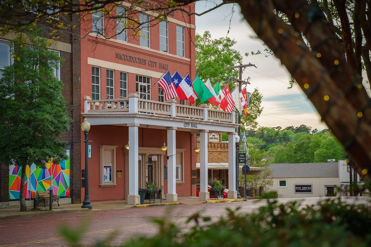 Flags Over City Hall.jpg