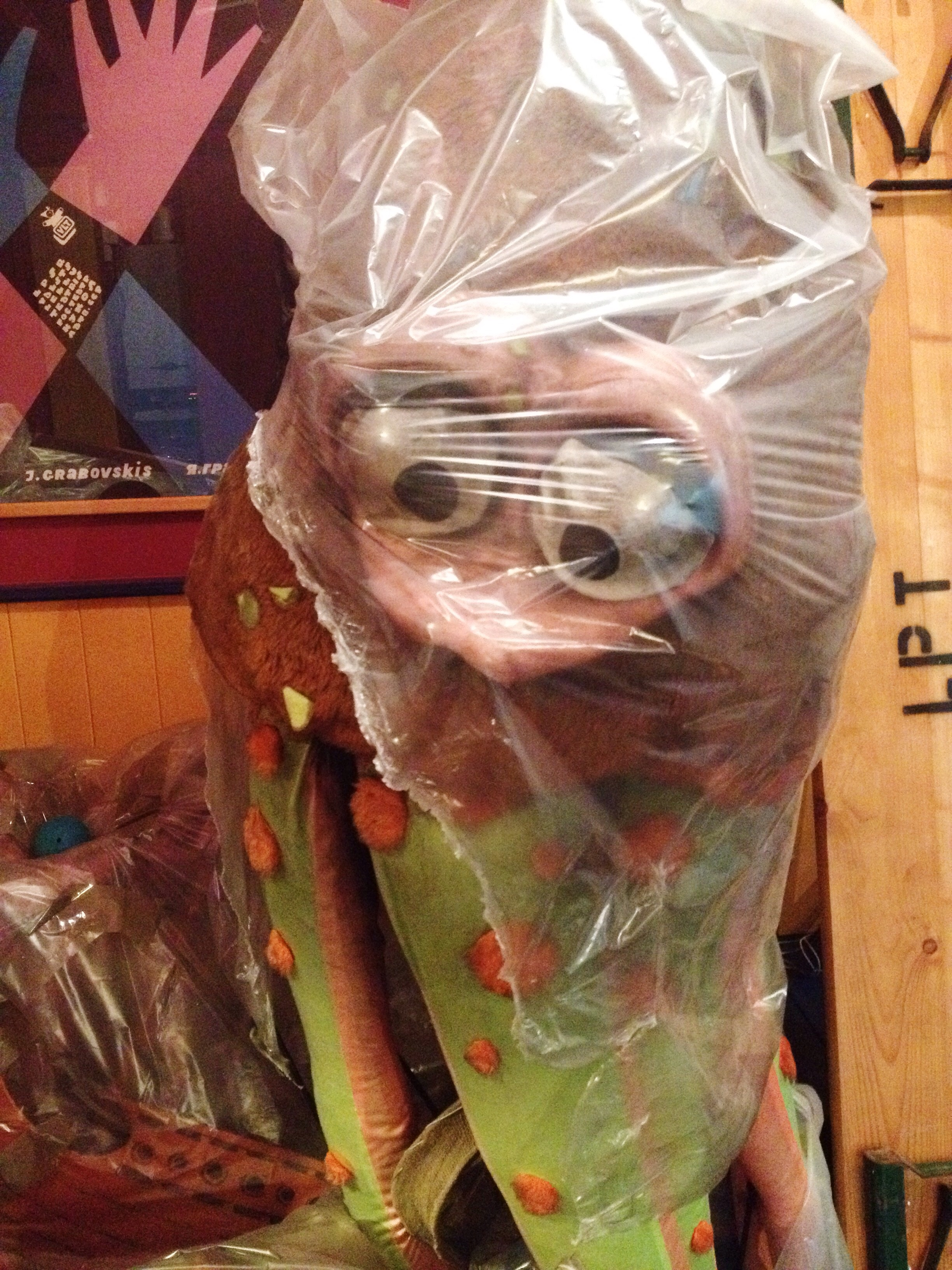 An Octopus in a bag