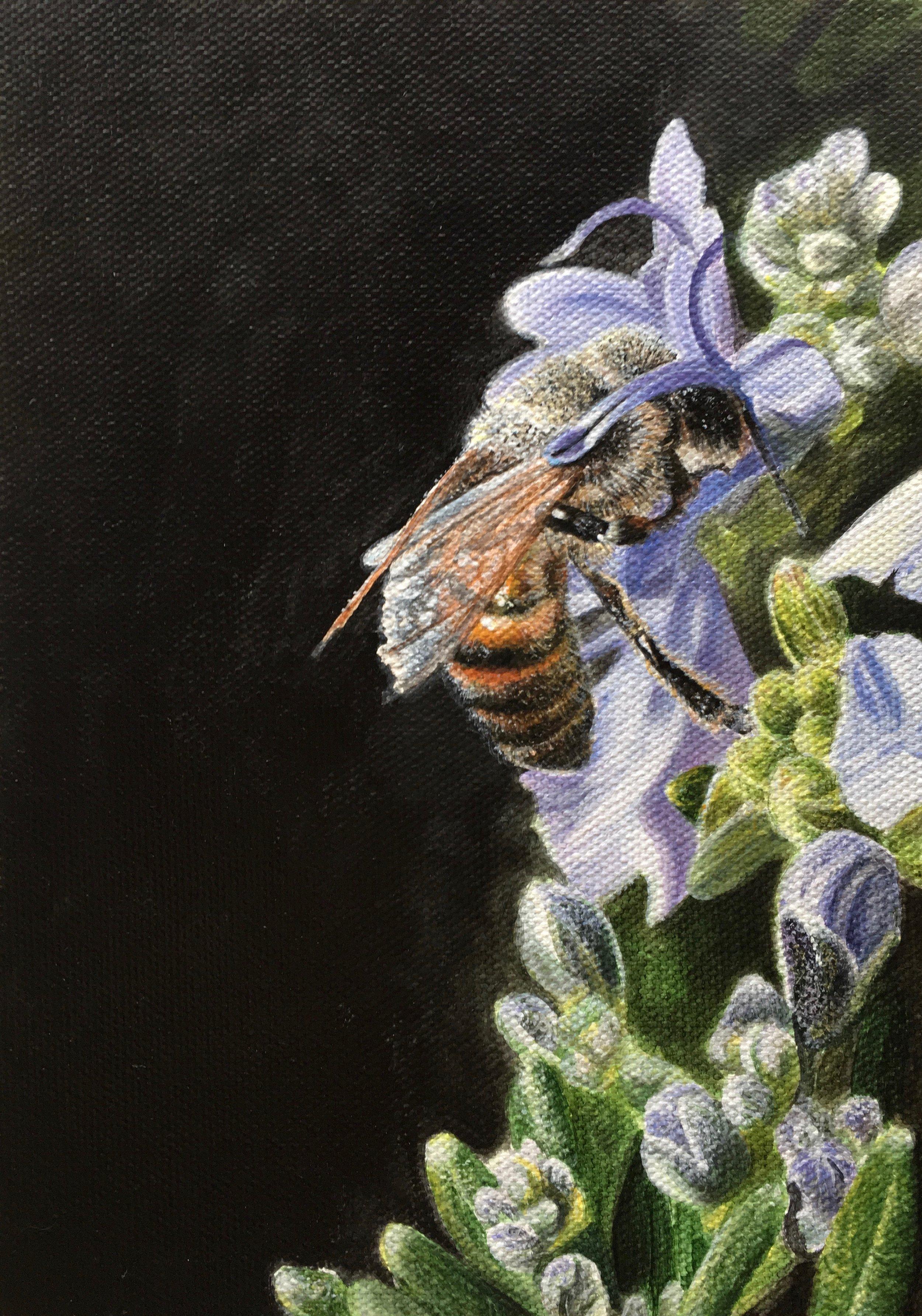 "Rosemary Bee, 7x5"", acrylic on canvas panel, 2018"