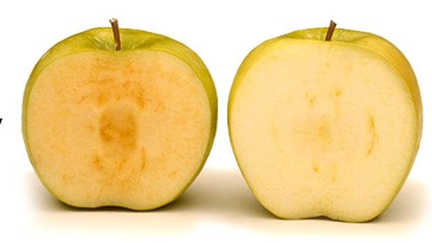 arctic-apple.jpg