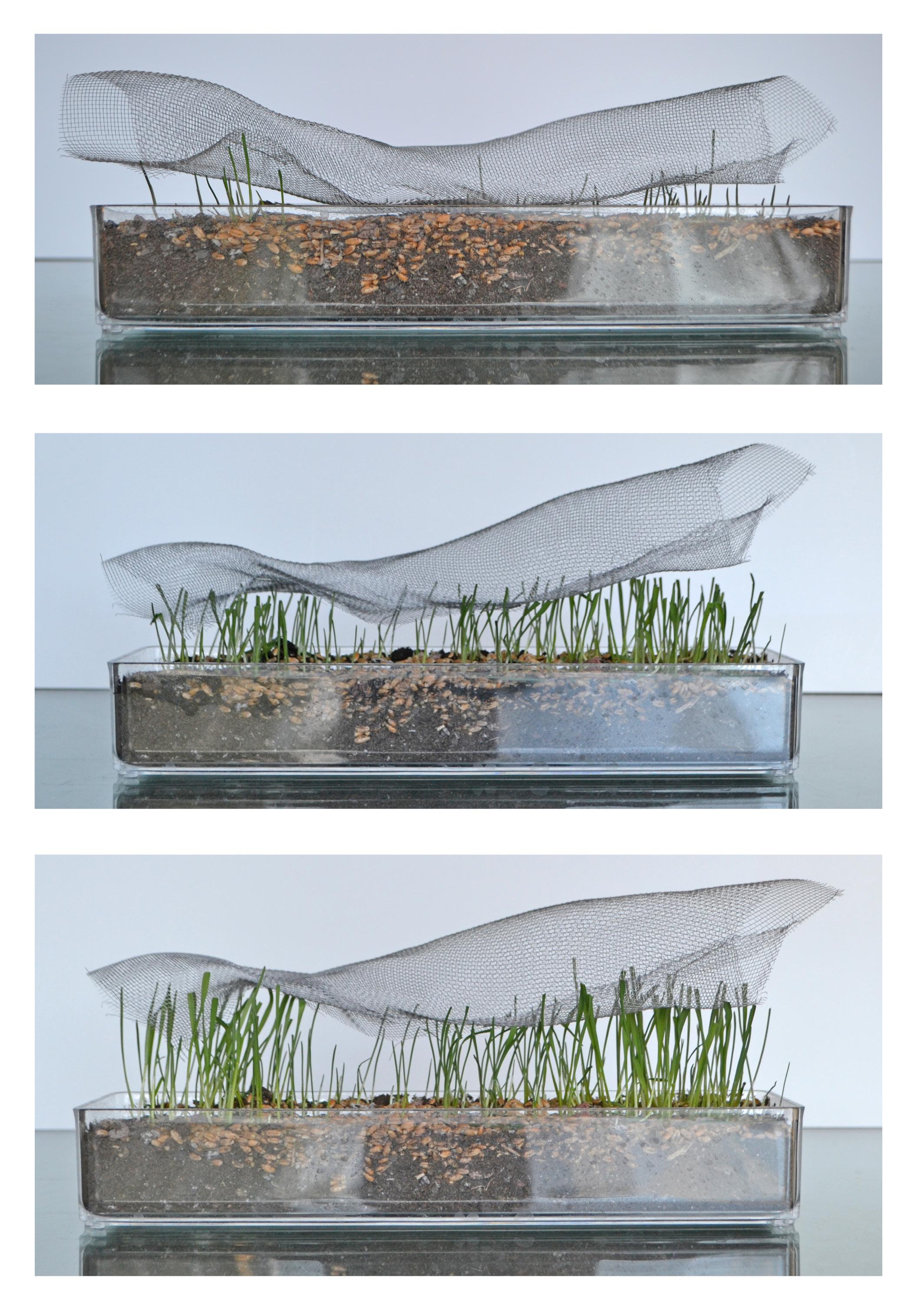 SparanoMooneyArchitecture_Chandler Residence_Concept Model6.jpg