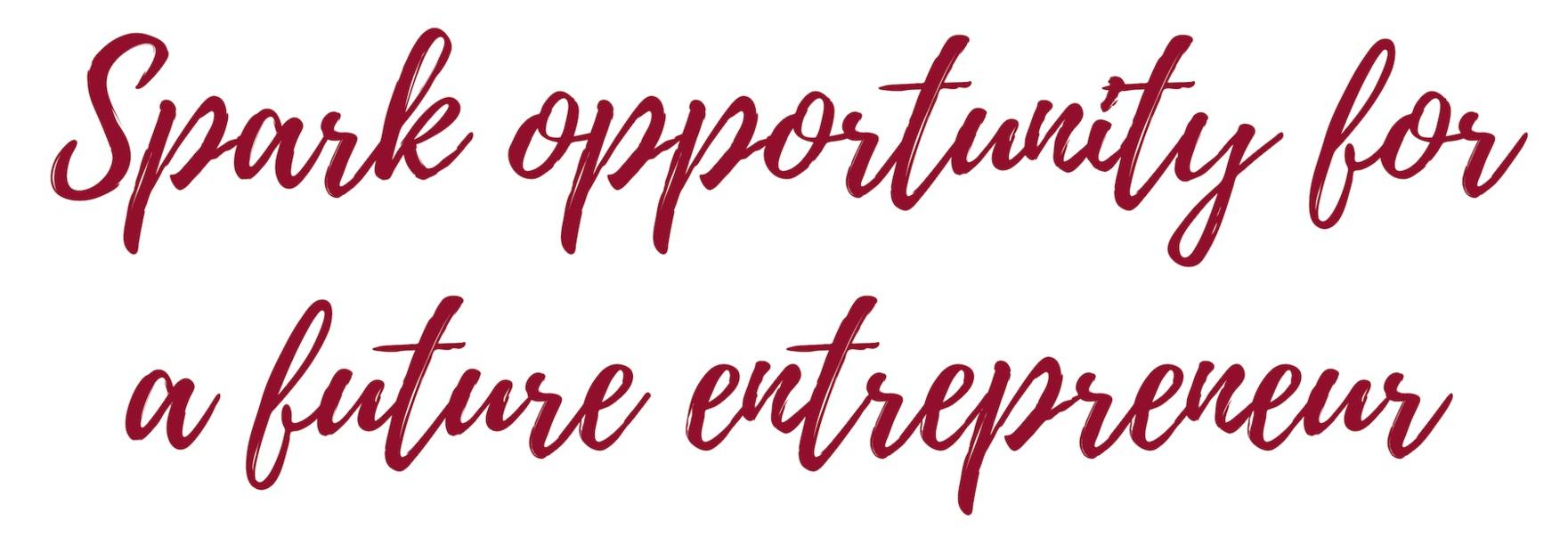 spark+opportunity+for+future+entrepreneurs+stacked.jpg