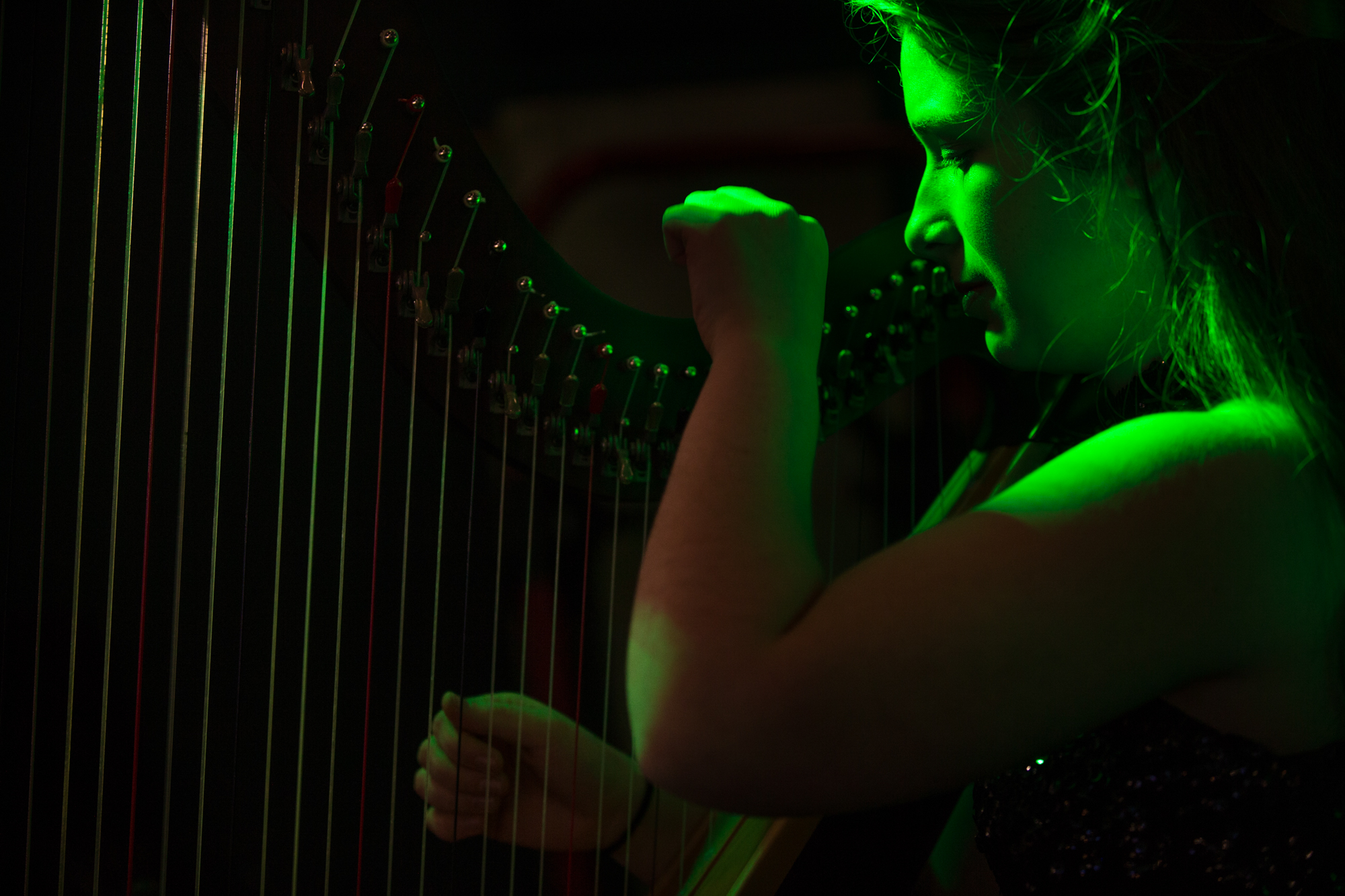 "MaryKathleen Scordato, a harpist in the Irish band Emerald Wind, performs the traditional song ""Down by the Sally Gardens"" during an event supporting the Irish Marching Society on Thursday, Oct. 18, 2018, at Owly Oop Sports Pub in Rockford. The society produces the city's annual Saint Patrick's Day parade, among other events. [SCOTT P. YATES/RRSTAR.COM STAFF]"