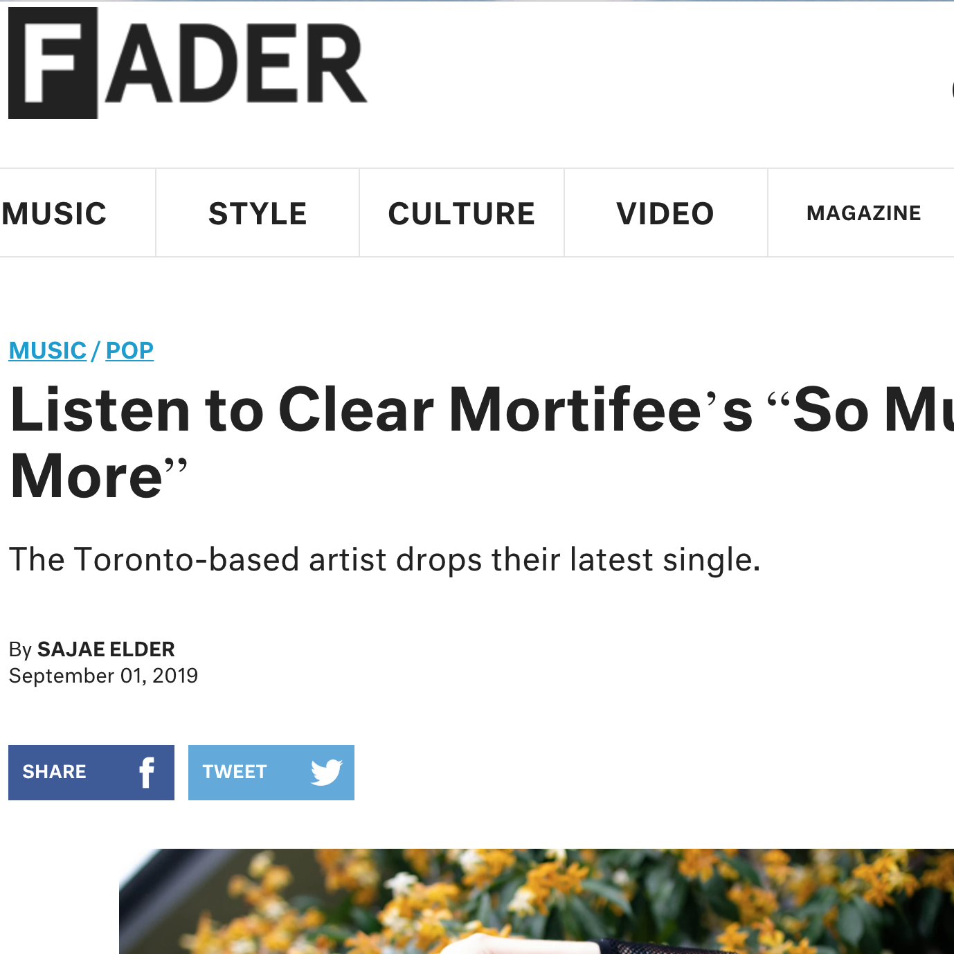 (( THE FADER )) 9/1/19