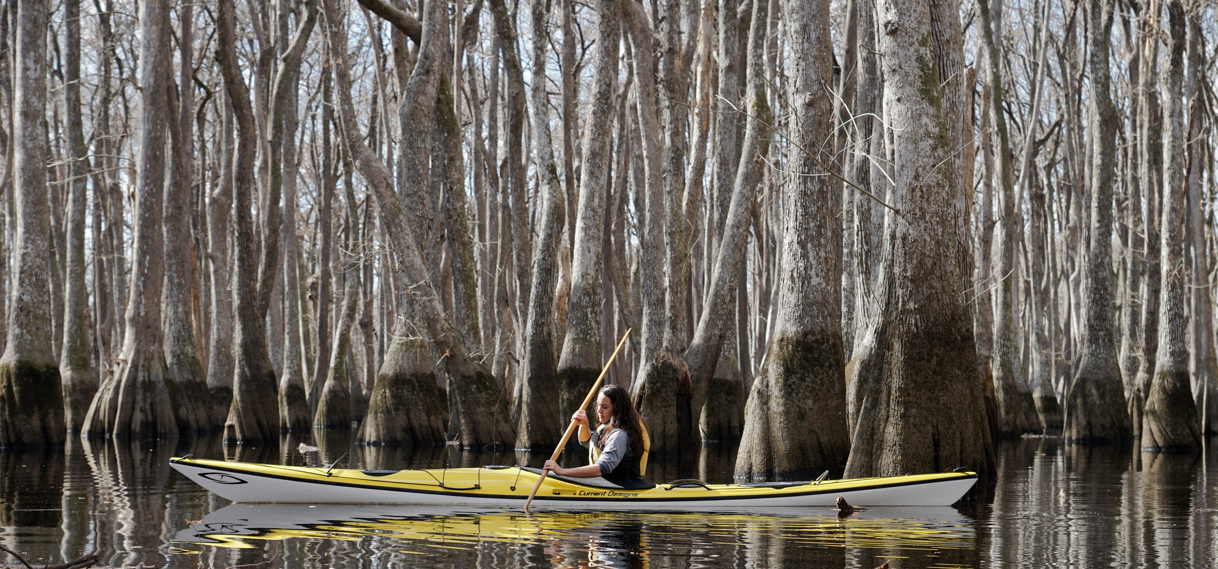 Kayak touring through the flooded old grown forests with a Greenland Paddle