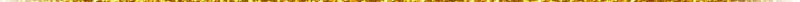 gold line shade.jpeg