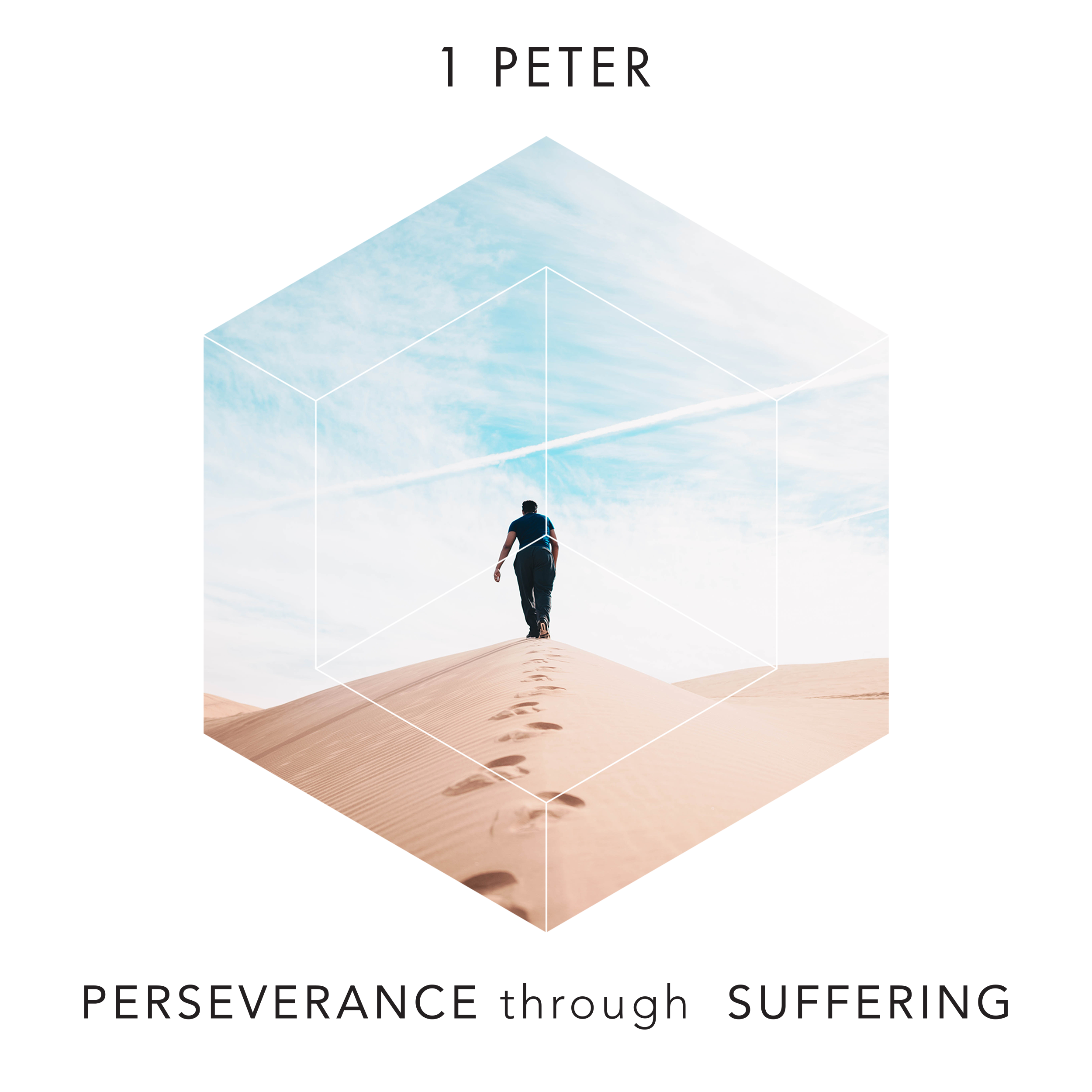 Perseverance through Suffering  T4 2017
