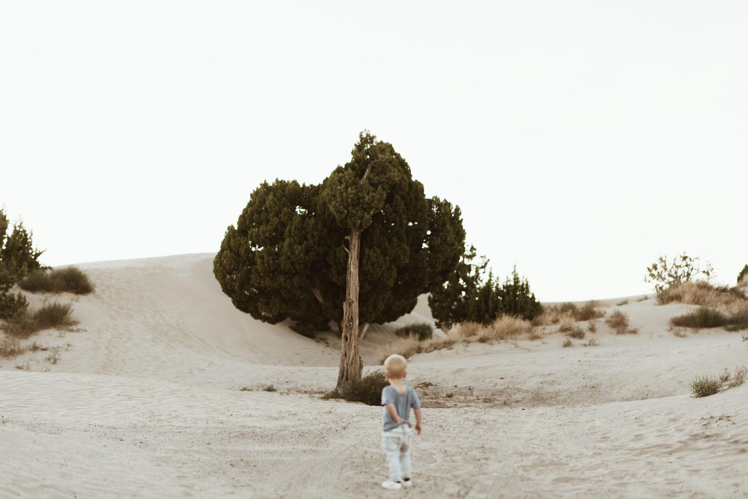 alyssa sorenson sand dunes family-154.jpg