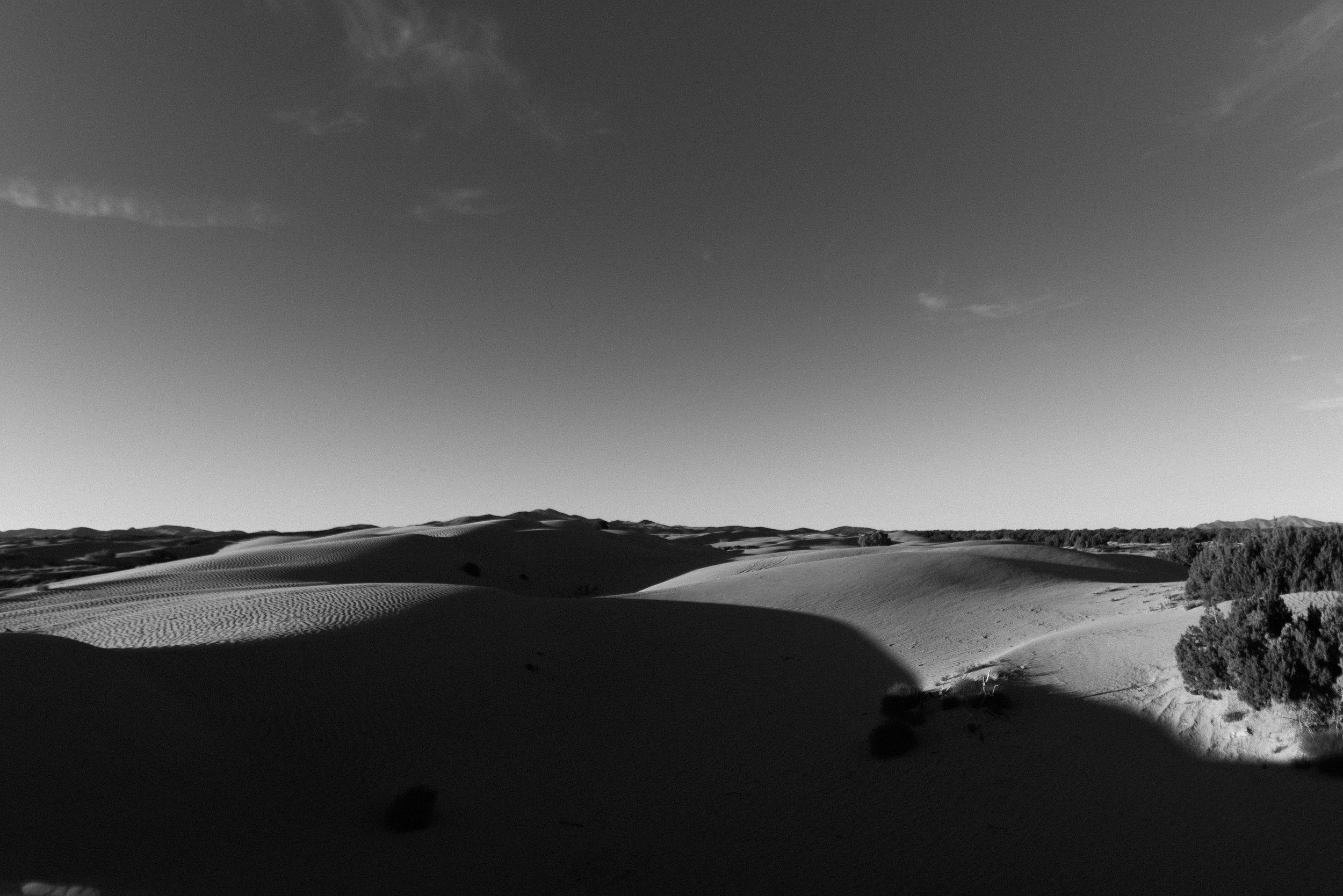 alyssa sorenson sand dunes family-61.jpg