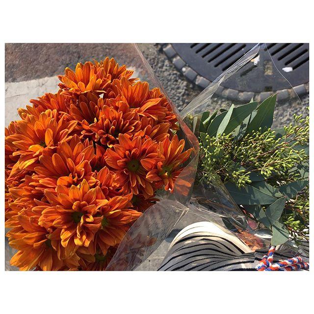 🦑 t u e s d a y s 🥕 a r e ⛺️ m y 🍊 f r i d a y s 🔥 #nyc #mums #flowers #eucalyptus #weekend #summer