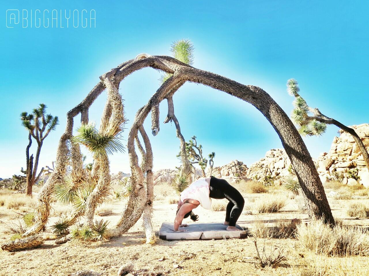 Big_Gal_Yoga_desert.jpg