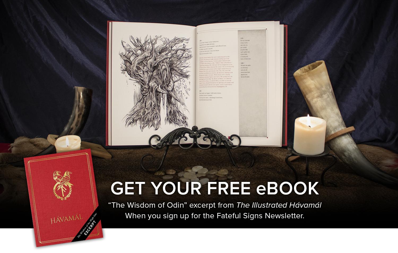 norse-mythology-viking-art-newsletter.jpg