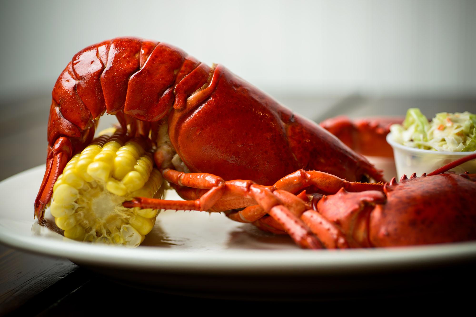 5753_d800_Old_Port_Lobster_Shack_Portola_Valley_Food_Photography.jpg