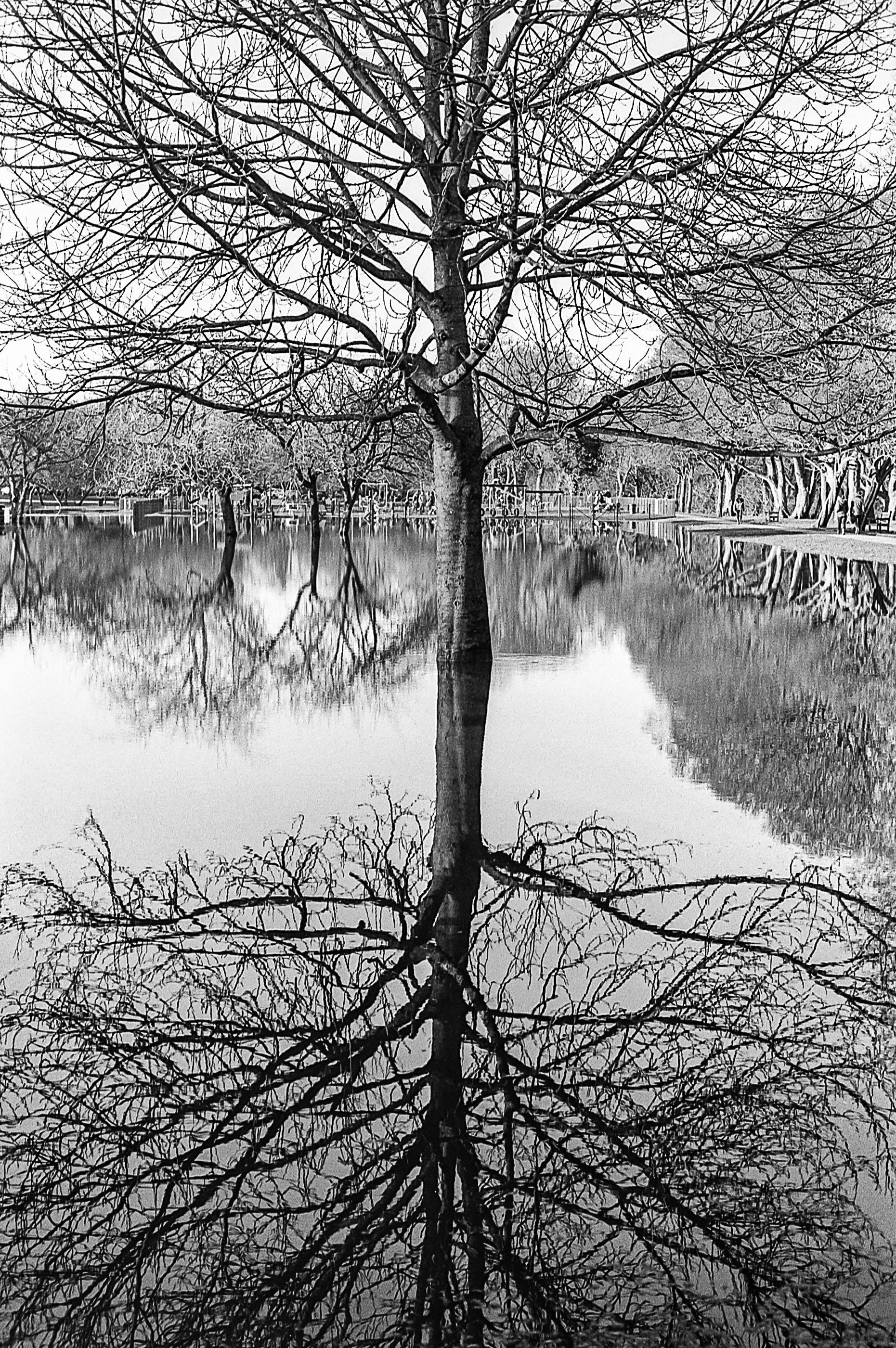Ilkley park flood (1 of 1).jpg