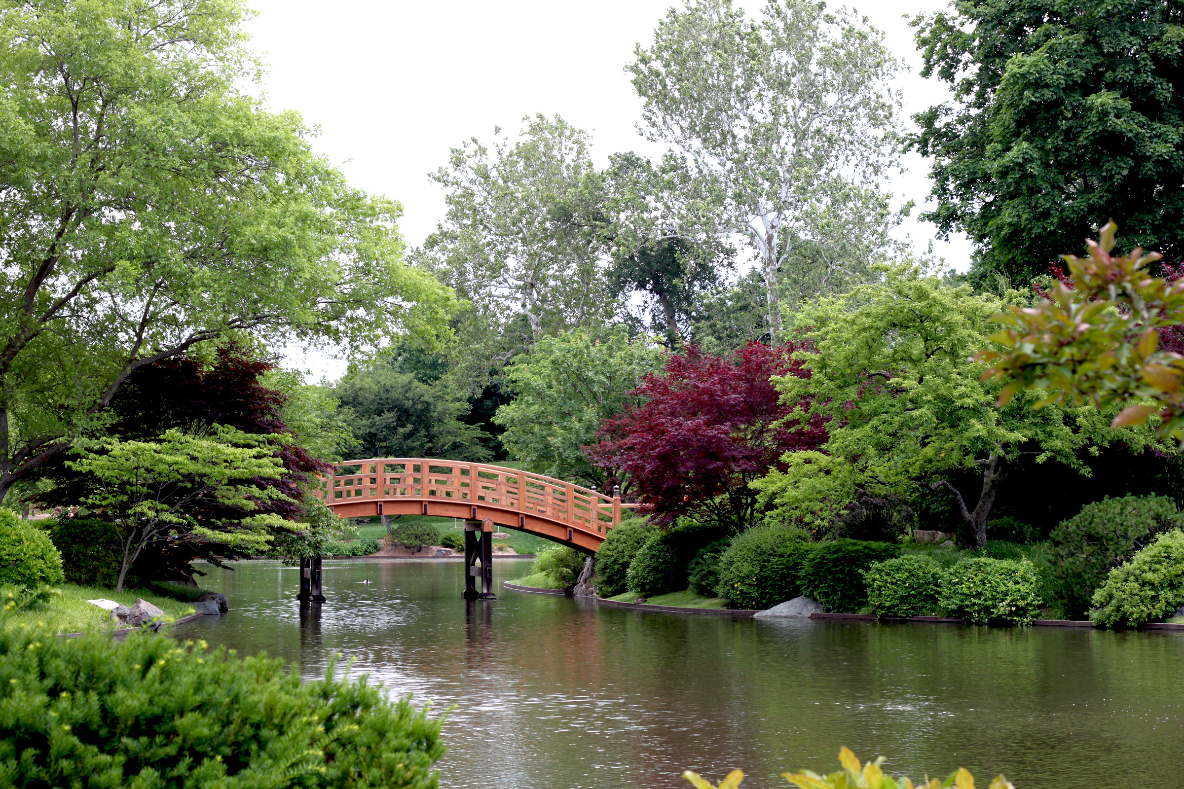 Japanese Garden, Missouri Botanical Garden