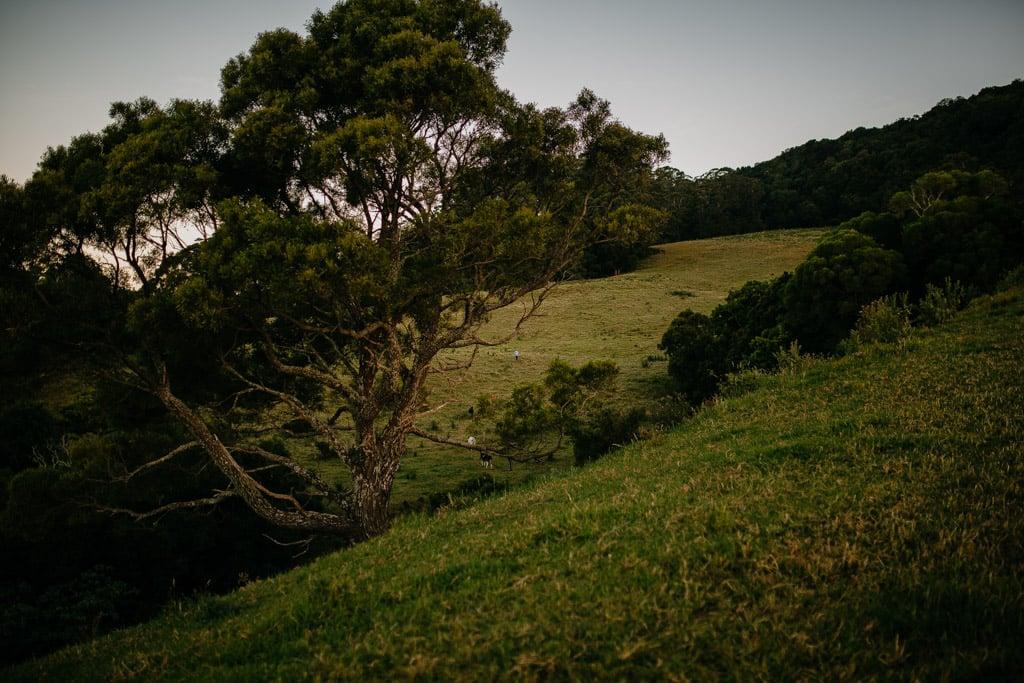 SouthCoastFamilyPhotographyAlanaTaylorPhotography-175.jpg