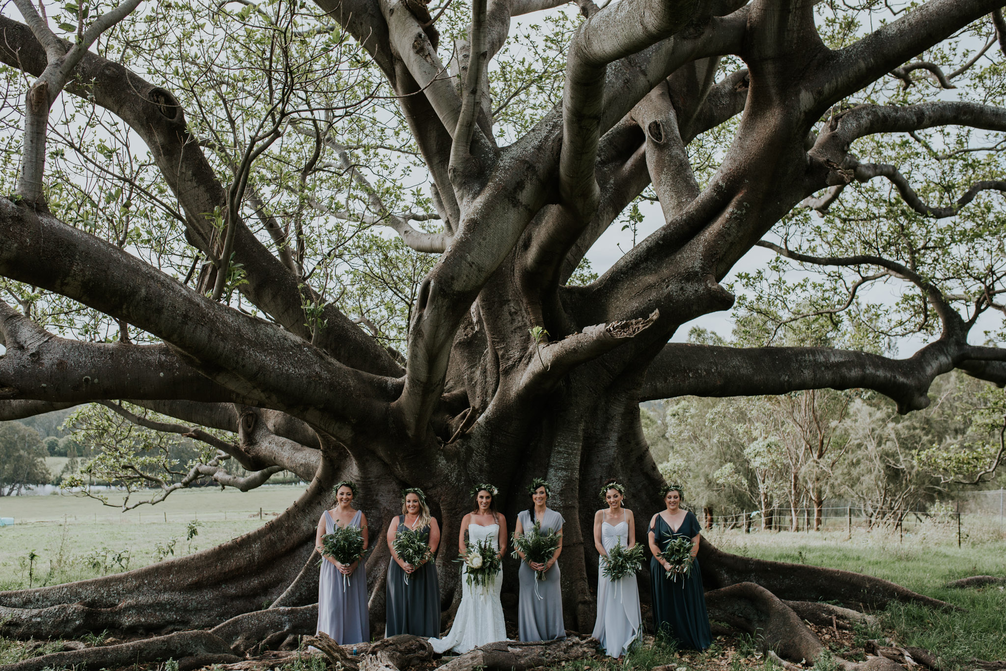 Tara_Luke_Jamberoo_Honey_farm_wedding-79.jpg