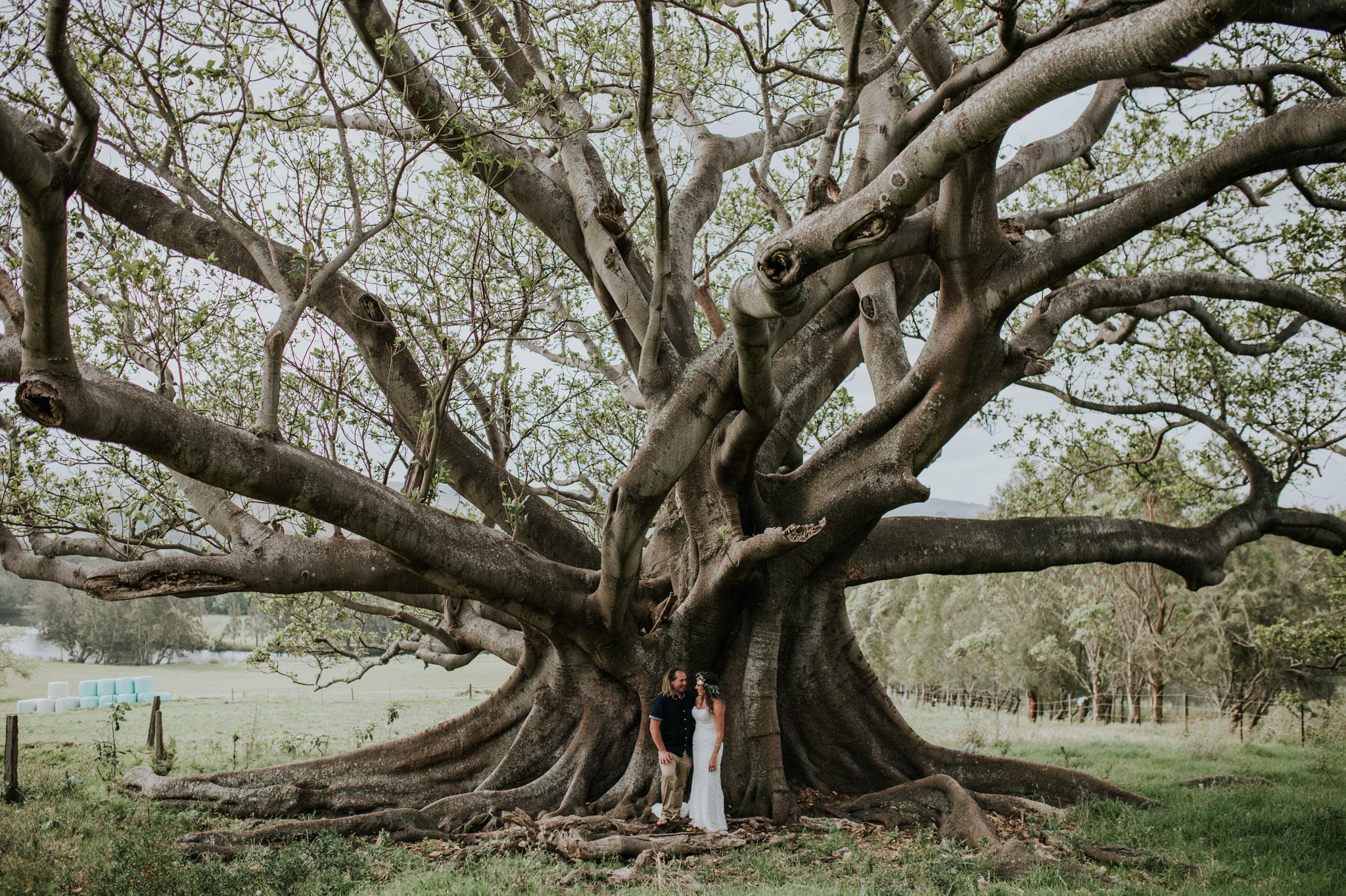Tara_Luke_Jamberoo_Honey_farm_wedding-89.jpg