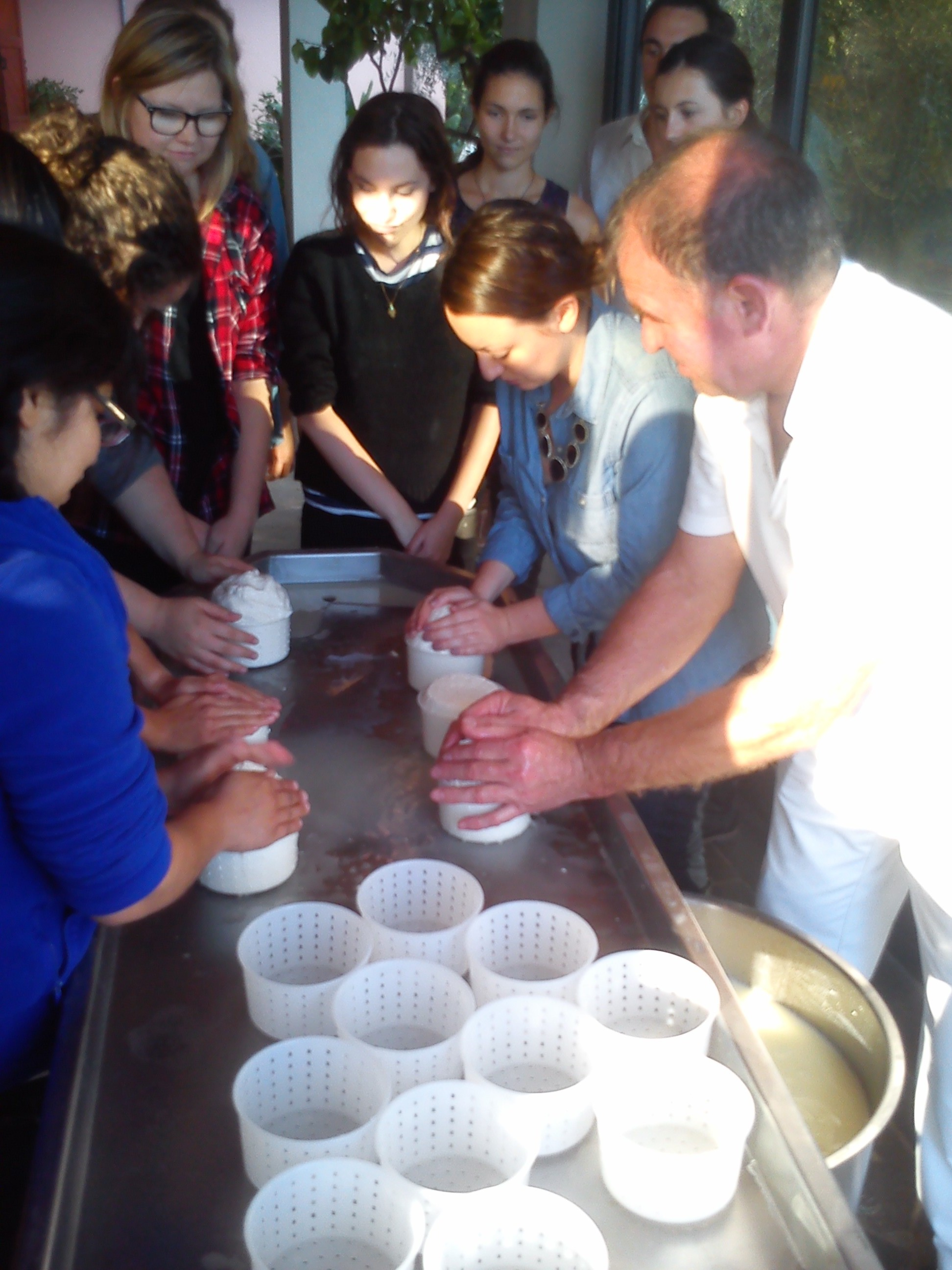Every student gets a chance to make their own batch of cheese