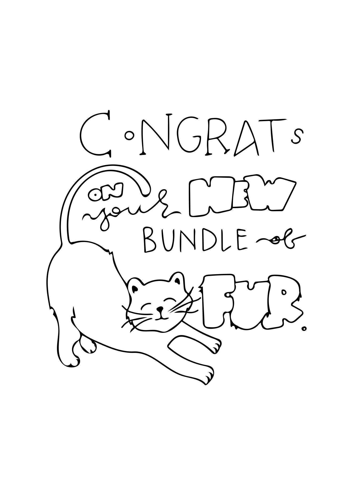 New Cat Card.jpg