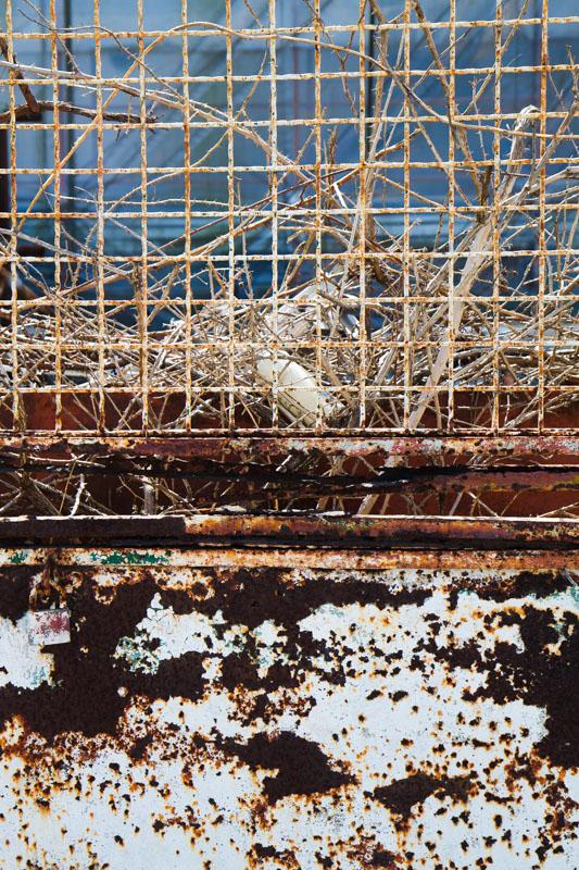 Textures and shape inspiration in an Italian sun bleached dock yard.jpg