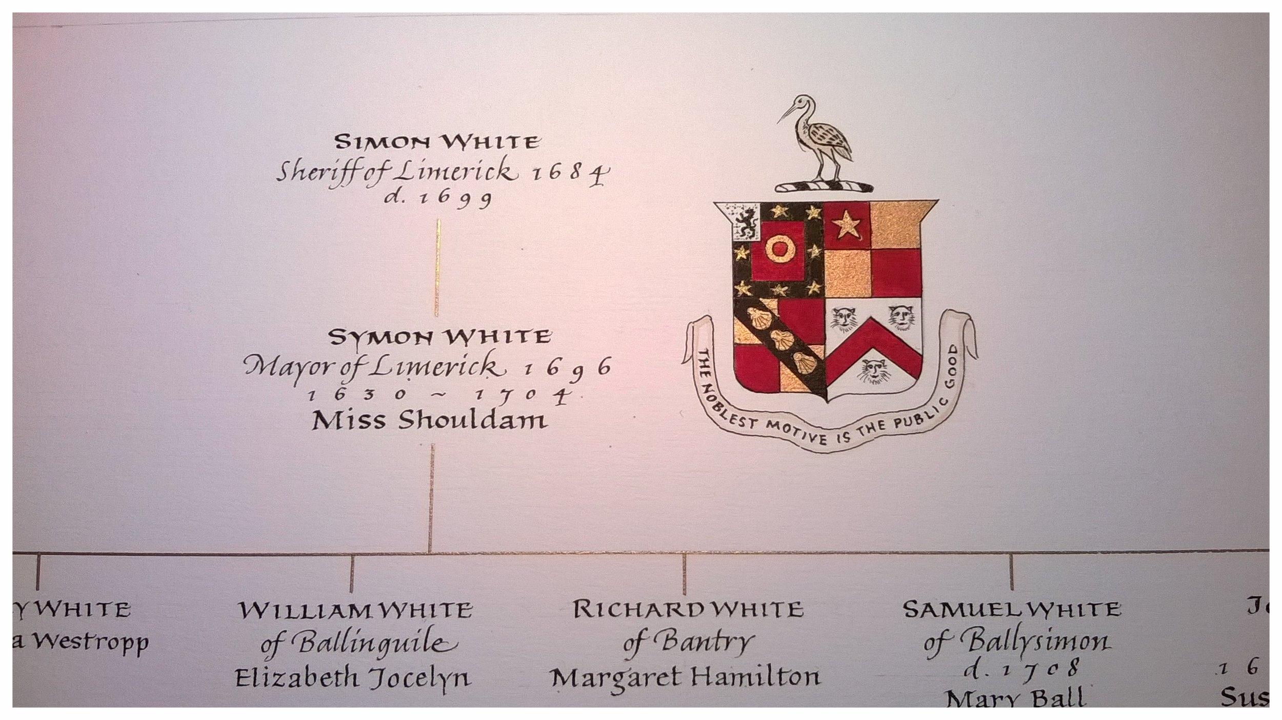 White Family Tree (section)