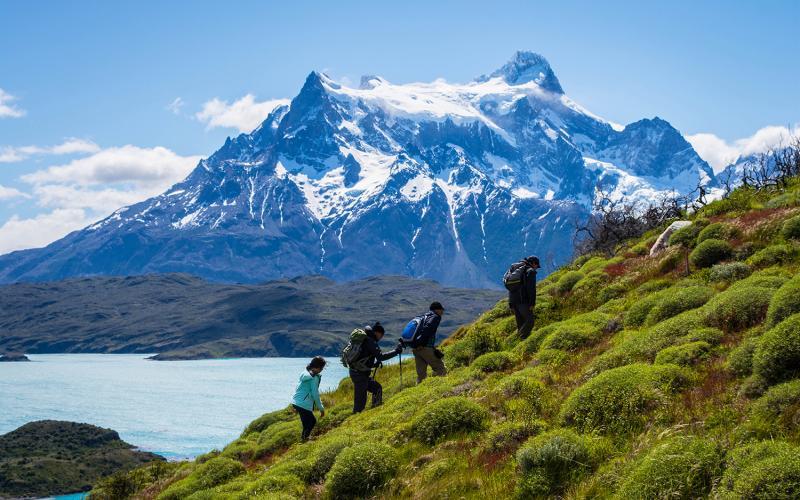 say hi to_ Patagonia