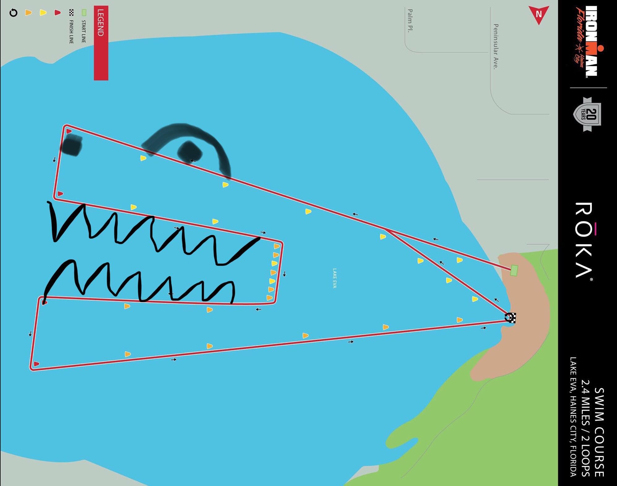 alligatorpantsswim