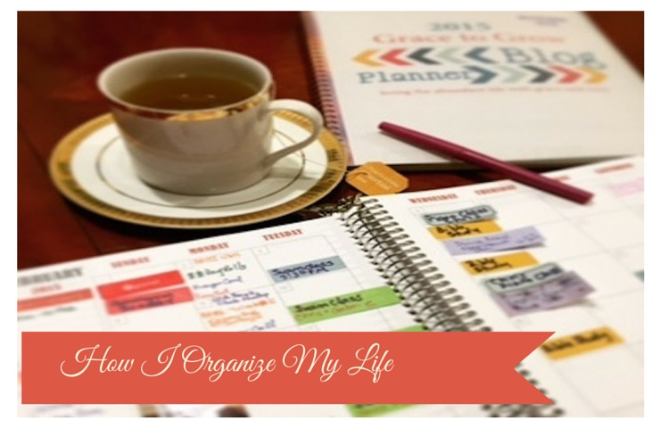 How I use my Plum Paper Planner to Organize My Life