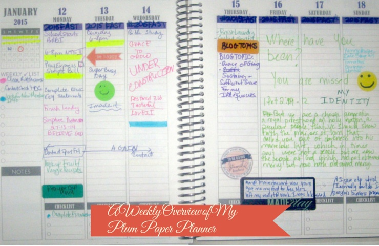 A Weekly forecast into my Plum Paper Planner